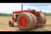 Ted Wynne Farm Report