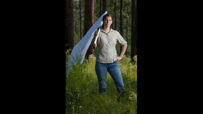 Oxford professor ticks Elizabeth Gleim Untitled low-res