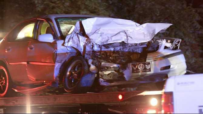 car-dog-crash