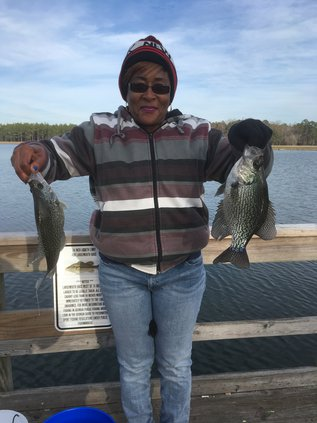 Striped bass provide great cold weather angling action