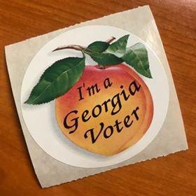 Georgia Voter
