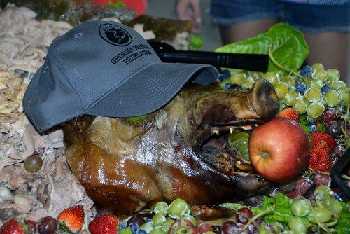 GWFSD - Pig with GWF cap.jpg