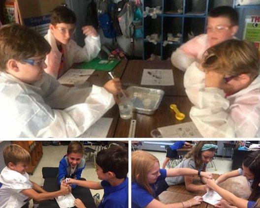 Piedmont academy science