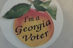 Georgia voter sticker